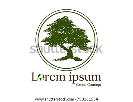 Green Oak Tree LogoVector Logo Design