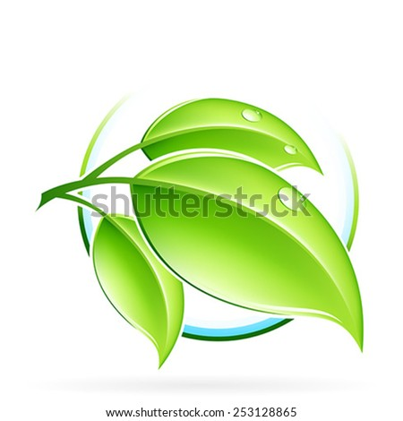 Green sprout with leaves isolated on white - stock vector