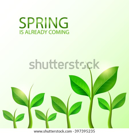 Green sprouts background. Vector illustration. - stock vector