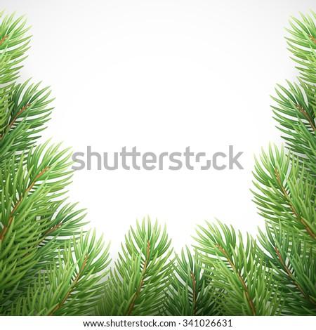 Green spruce branches like Christmas frame. Vector illustration EPS10 - stock vector