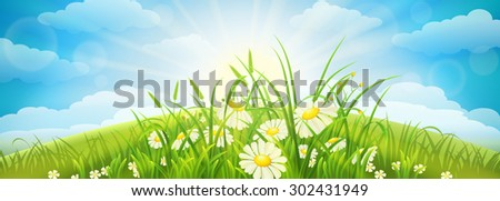 Green summer background with meadow, grass, flowers, sky and sun - stock vector