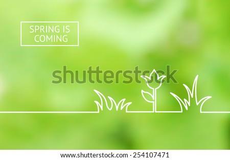 Green summer flower line design, horizontal card. Vector illustration. - stock vector