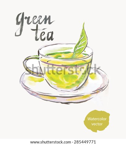 Green tea, watercolor, hand drawn, vector