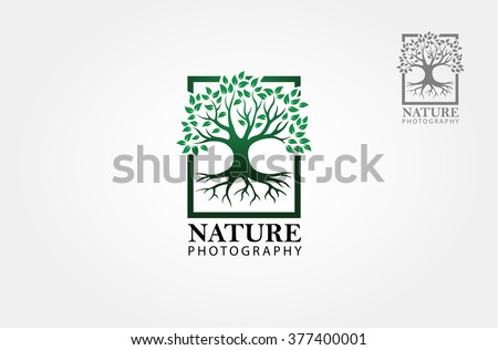 Green tree photography Logo template. Clean and modern style on white background - stock vector