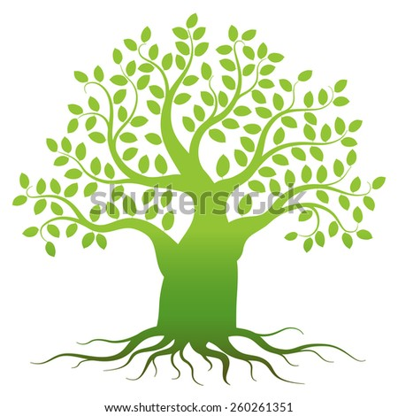Green tree silhouette on white background, vector illustration - stock vector
