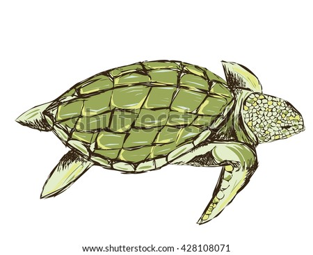 green turtle isolated on a white background. rough stylized. design for T-shirts. grunge style - stock vector
