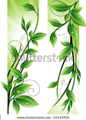 Green twig - stock vector