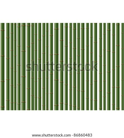 Green vector  bamboo background. Can be scaled  without problems and quality loss. - stock vector