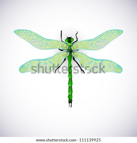 green vector dragonfly insect vintage real - stock vector