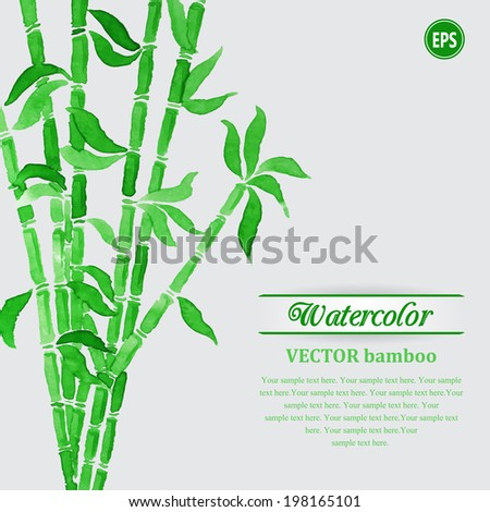 Green watercolor bamboo branches with green leaves - stock vector