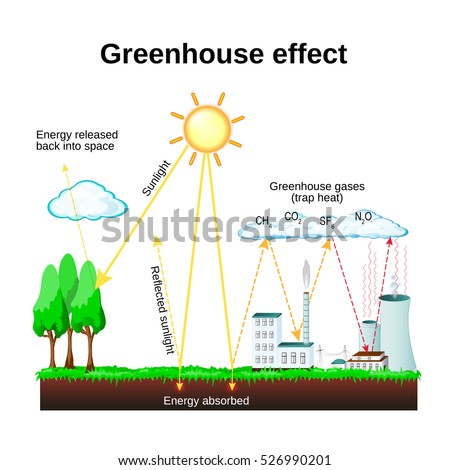 Essay: The Greenhouse Effect