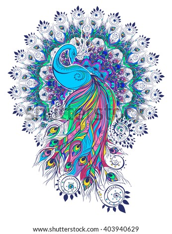 Greeting Beautiful card with peacock Peacock made in vector Color bird ... Peacock Pattern Outline
