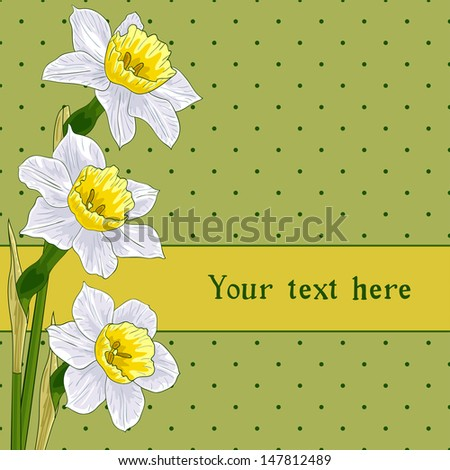 greeting card with narcissus (daffodils), vector illustration, eps10 - stock vector