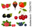 Group of cranberries, blueberries, cherries, raspberries wild strawberries with plant leaves. Photo-realistic vector illustration. - stock vector