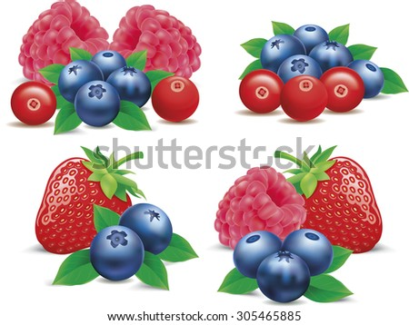 group of strawberry, raspberry, cranberry, blueberry - stock vector