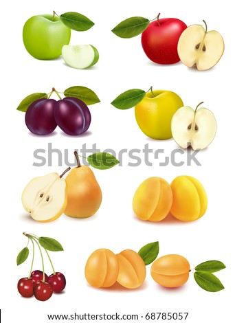 Group with different sorts of fruit. Vector illustration.