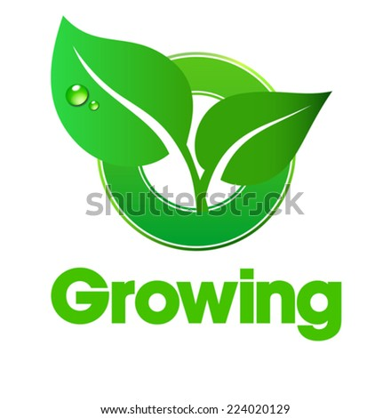Growing Leaf - Green concept using leafs - stock vector