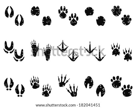 grungy Animal Footprint Track icon - stock vector