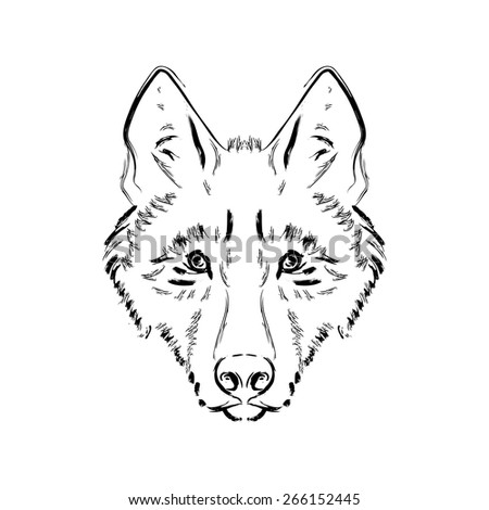 Grungy black and white wolf head illustration  - stock vector