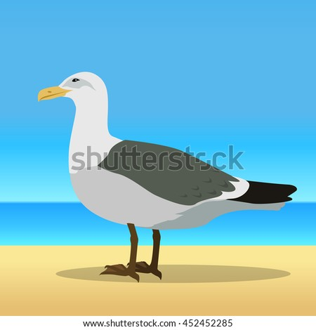 Gull vector. Sea bird wildlife in flat style design. Illustration for prints, vacation advertising, childrens books illustrating. Beautiful Seagull bird seating on sandy sunny beach.
