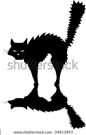 Hissing Cat Stock Photos Images Amp Pictures Shutterstock