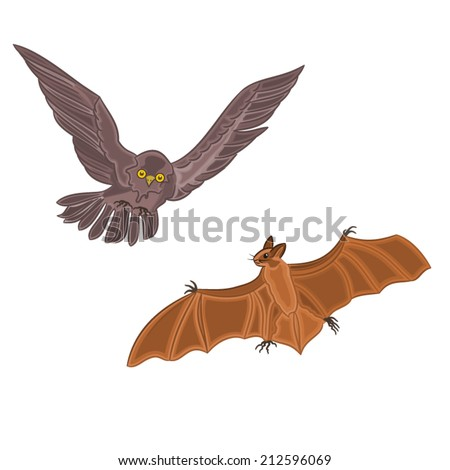 Halloween decoration owl and bat horror set vector