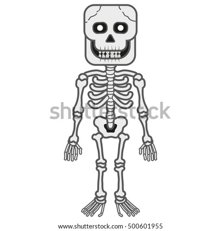 Halloween Skeleton Stock Images, Royalty-Free Images & Vectors ...