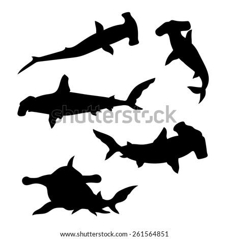 hammerhead shark set of silhouettes vector
