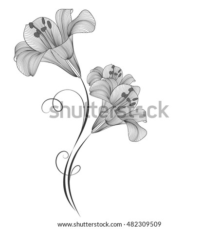 Hand-drawing floral background with flowers lily. Element for design. Vector illustration.
