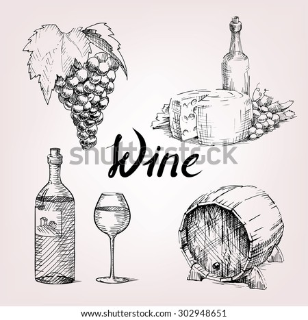 hand drawing set of wine and grape. barrel and cheese with glass