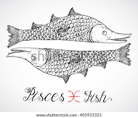 Hand drawn astrological zodiac sign Fish or Pisces. Line art vector illustration of engraved horoscope symbol. Traditional style. Doodle drawing and sketch with calligraphic lettering - stock vector