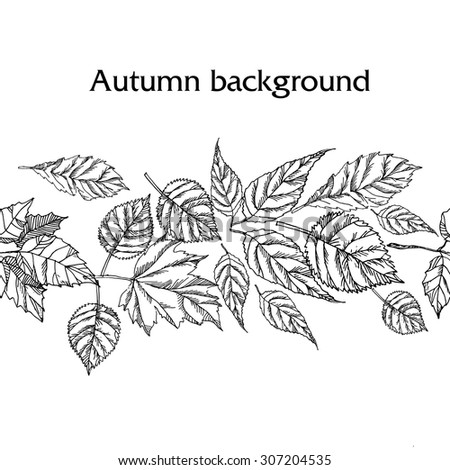 Hand drawn autumn background - stock vector