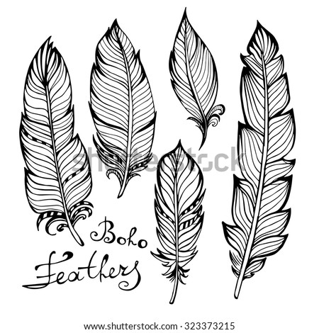 Hand drawn bird black feathers closeup isolated on white background set. Boho style. Vector illustration - stock vector