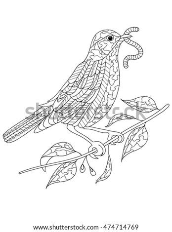 Turkey Hen Line Drawing Related Keywords & Suggestions - Turkey Hen ...