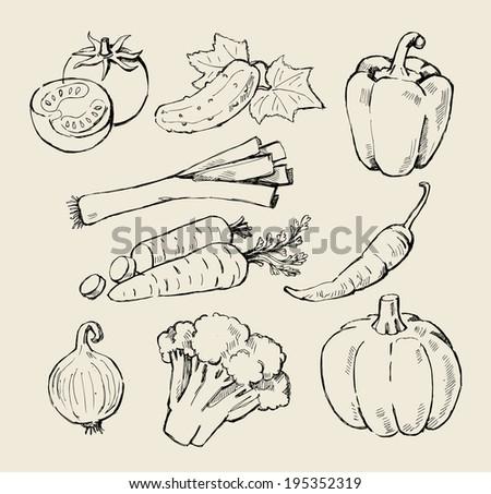hand drawn black fresh vegetables on beige - stock vector