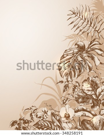 Hand drawn branches and leaves of tropical plants. Natural background.  - stock vector