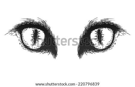 Hand drawn cat eyes. Vector eps 8 - stock vector