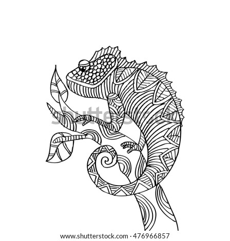 Hand Drawn Chameleon Zentangle Style