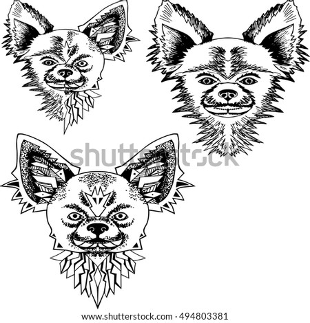 Schnauzer Dog Head Zentangle Stylized Vector Stock Vector
