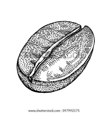 Hand drawn coffee bean, black on white background