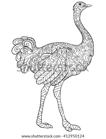 Hand Drawn Coloring Page Ostrich Zentangle Stock Vector 412950124 Ostrich Coloring Page