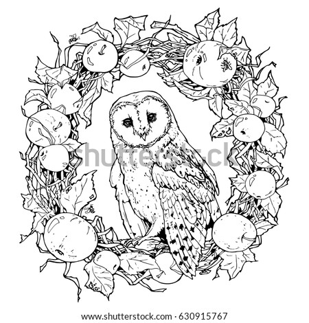 Hand Drawn Decorative Illustration Barn Owl Stock Vector 630915767