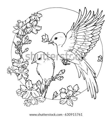 Hand Drawn Decorative Illustration Of Spring Birds Coloring Page With And Flowers