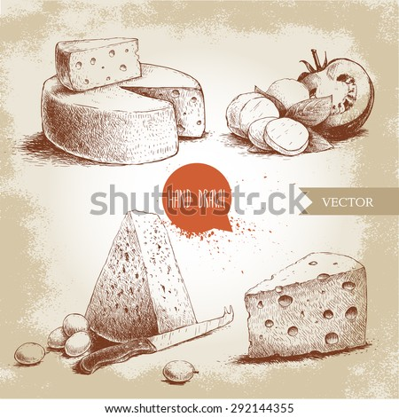 Hand drawn different type of cheese set. Edam, mozzarella cheese with basil leafs and tomato, round cheese head, triangle of cheese. Vector organic food illustration. Vintage design. Sketch style. - stock vector