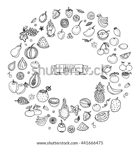Hand drawn doodle fruits icons set Vector illustration seasonal fruits symbols collection Cartoon different kinds of fruits Various types of tropical fruits on white background Sketch style Fruit eps - stock vector