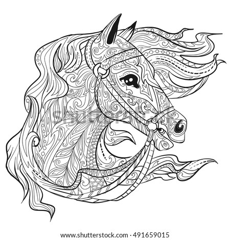 horse head coloring pages to print - horse head coloring page stock images royalty free images