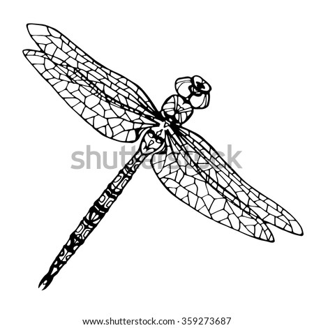 Hand Drawn Dragonfly Coloring Page Stock Vector HD (Royalty Free ...