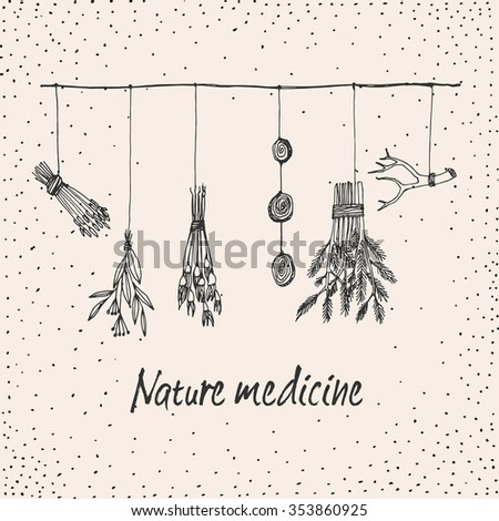 Hand drawn dry herb and plants garland illustration in vector. Natural medicine illustration.