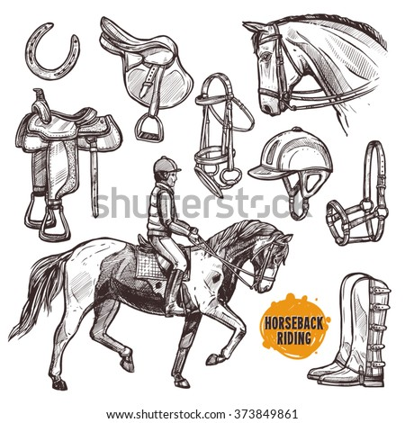 Hand Drawn Equipment For Horses. Horse And Horseback Riding Sketch Set - stock vector