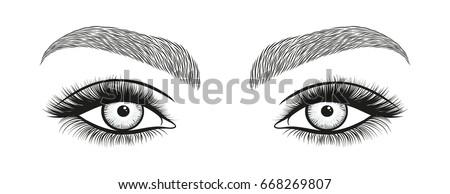 Eye Lashes Drawing Female Eyes Drawing Long Eyelashes Royalty Free